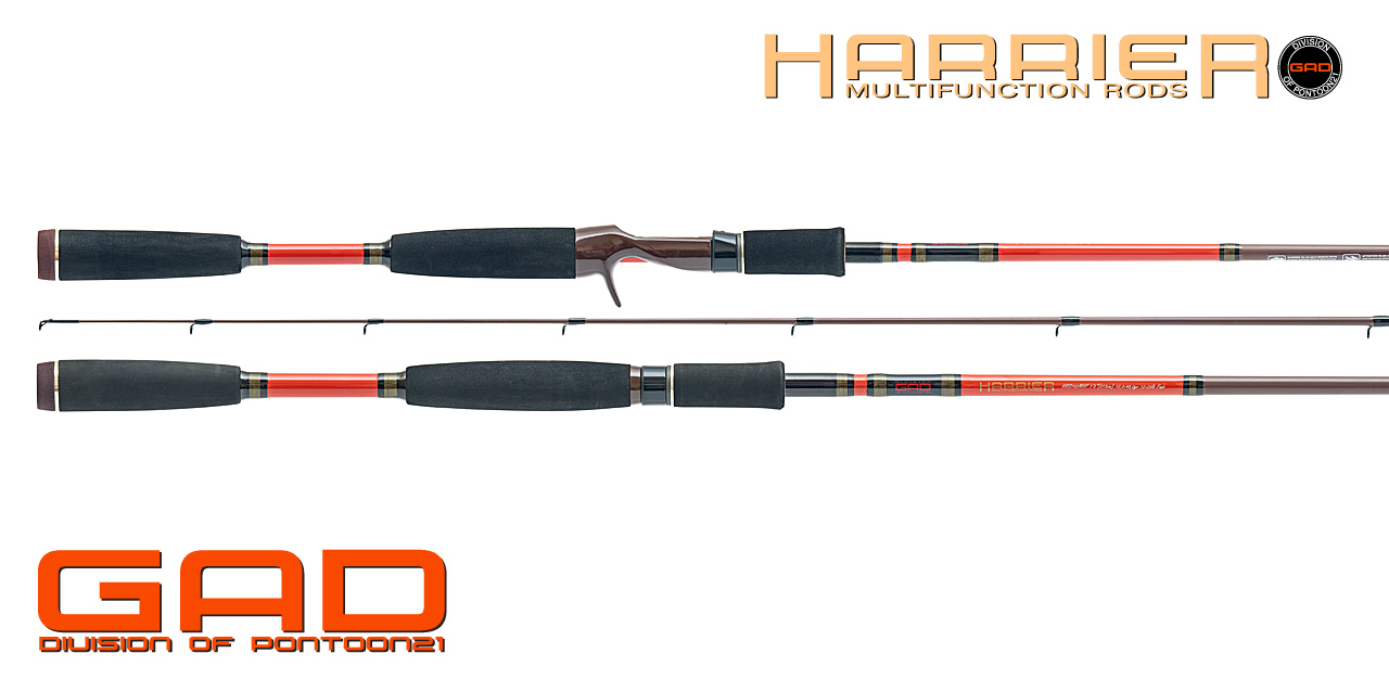 GAD_Rods_0000_Harrier_2